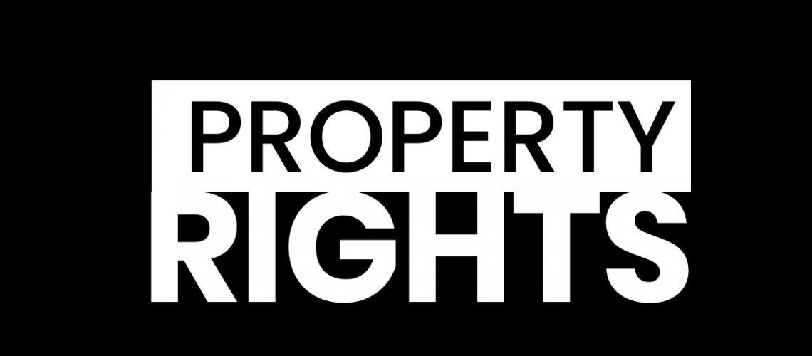 property right americhicks may 13 2019